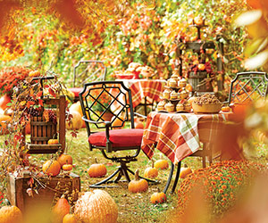 Sandra Lee's Country Harvest Party