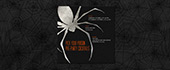 foil, halloween, halloween party, scary, silver, spider, spiderweb, web