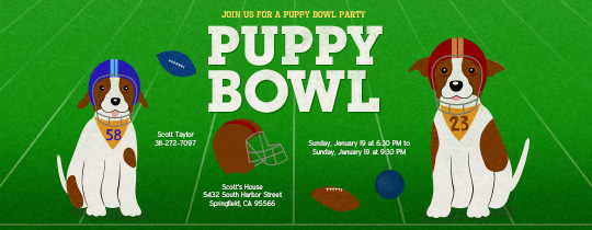 puppy, dog, dogs, doggie, football, puppy bowl,