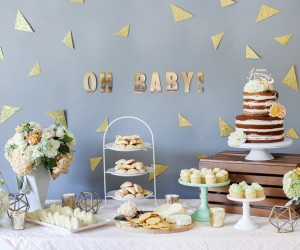 Baby Shower Party Guide